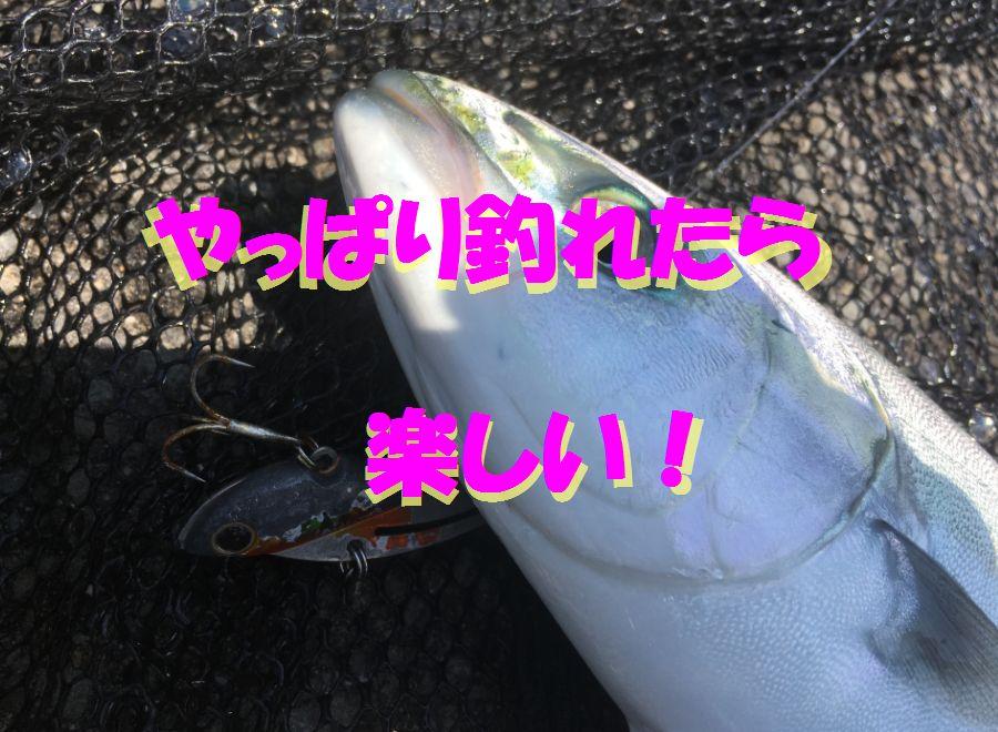 Thumbnail of post image 011