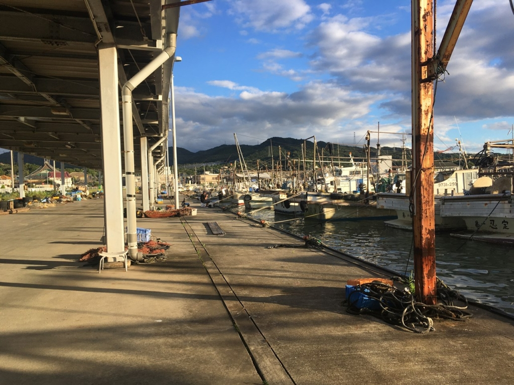 9/18の深日漁港