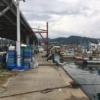 9/26の深日漁港